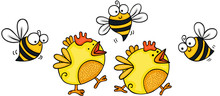 Two Little Yellow Chicks With Bees