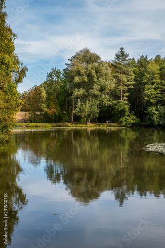 Fototapeten Forest river romantic lake