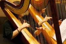Two Women Play The Harp During A Symphonic Concert. Close Up On Hands And Strings. Excellence And  Artistic Skill.