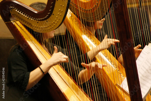 Fotografie, Tablou Two women play the harp during a symphonic concert