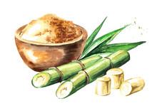 Sugar Cane With Brown Sugar Co...