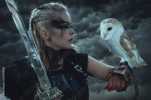 Obraz na plátně beautiful white owl, Viking blonde woman with shield and sword, braids in her hair