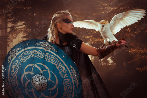 Fotografie, Obraz Warrior, beautiful white owl, Viking blonde woman with shield and sword, braids in her hair