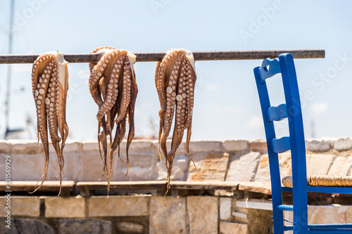 Octopus drying in the sun  Mediterranean Octopus in Santorini island, Greece