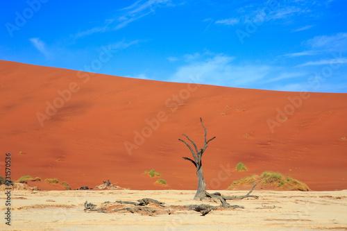 Foto op Canvas Baksteen Namibia - Sesriem - Sossusvlei