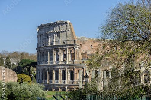 Plakat Widok na Forum Romanum i miasto Rzym z Palatynu. Forum z sąsiednimi budynkami znajduje się w centrum starożytnego Rzymu. Świątynie, łuki, bazyliki i inne budynki.