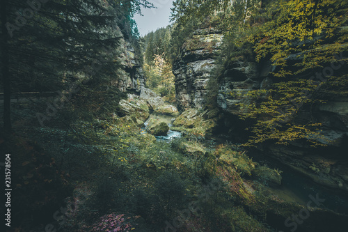 Picturesque view of Hrensko national Park, situated in Bohemian Switzerland, Cze Wallpaper Mural