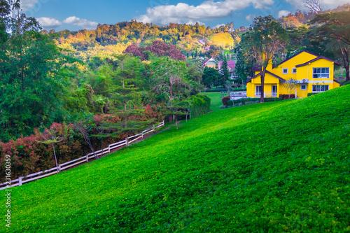 Deurstickers Groene European style house, lawn, trees, flowers and mountain views.