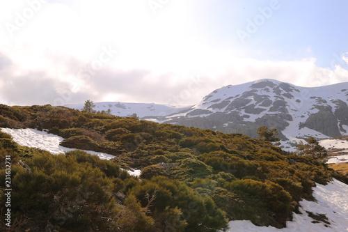 Fotobehang Wit Paisaje Nevado