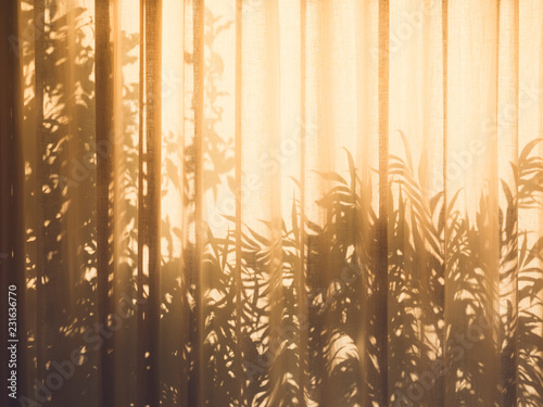 obraz lub plakat Tree leaves shadow on Curtain wall Nature Abstract background