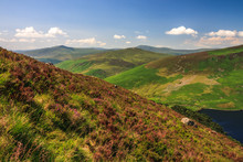 Scenic Landscape Of Wicklow Mountains In Summer, Sally Gap, Ireland