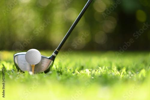 Deurstickers Golf Golf ball on green grass ready to be struck on golf course background