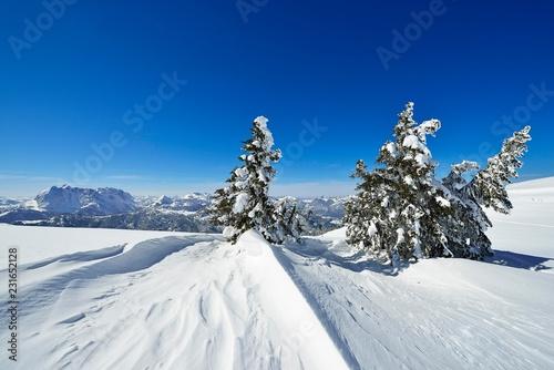 Snow drift on the Fellhorn, Reit im Winkl, Bavaria, Upper Bavaria, Germany, Europe