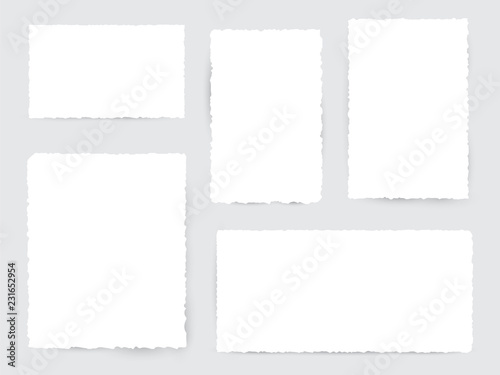 Obraz Blank white torn paper pieces - fototapety do salonu
