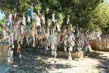 Wish Tree, Larnaka, Southern Cyprus, Cyprus, Europe