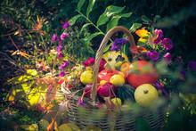 Autumn Harvest Basket Filled Fruit Garden