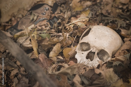 Canvas Print Human scull and boots buried in the forest, crime scene concept