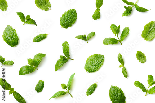 Pattern of mint leaves
