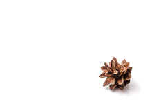Brown Fir Cone On A White Back...