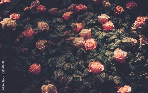 Photo  Artificial Flowers Wall for Background in vintage style