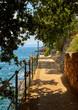 Lovran, Istria, Croatia. Picturesque embankment along resort old