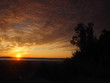 Sunset. On the big river. Coast. Tree and leaves. Summer. Russia, Ural, Perm region