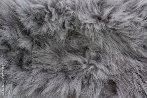 Anumal fur textured Canvas Print