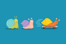 Fast And Slow Snails. Snail Wi...