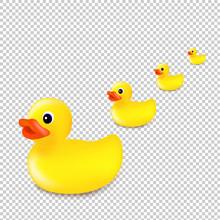 Rubber Ducks Isolated Transpar...