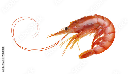 fresh boiled tiger shrimp isolated on white