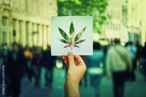 Valokuvatapetti marijuana legalization