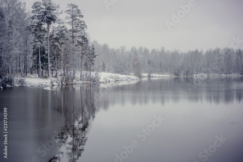 Photo Stands Dark grey Winter landscape: snow-covered forest on the lake, the reflection of snow trees in the water.