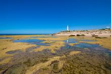 Low Tide Rocky Seaside In Trafalgar Cape With Lighthouse Reflected