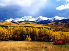 Kebler Pass In Crested Butte C...