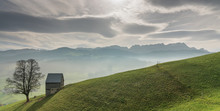 Idyllic And Peaceful Mountain Landscape With A Secluded Wooden Barn And Lone Tree On A Grassy Hillside And A Great View Of The Swiss Alps Behind