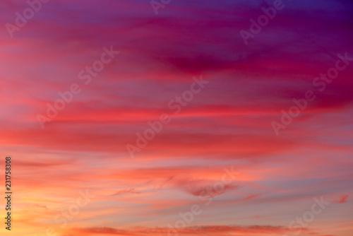 Foto auf AluDibond Koralle colorful sky