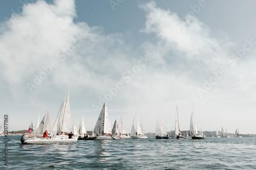 Obraz na plátně line up of sailboats getting ready for yacht race