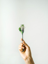 Crop Hand Holding Fork With Gr...