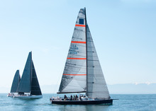 Sailboat In An International Y...