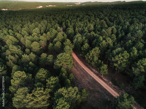 Foto op Canvas Noord Europa Aerial view from drone, of curved mountain road between woods.