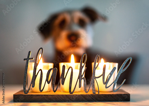 Thankful Gratitude Candles With Dog in Background Canvas Print