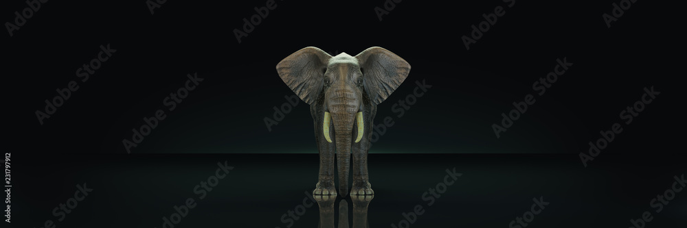 huge elephant in dark background. 3d rendering