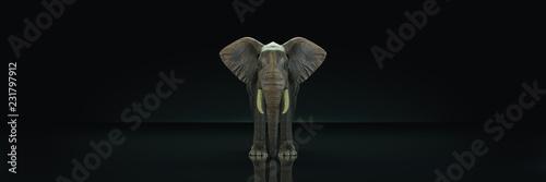 Photo  huge elephant in dark background. 3d rendering
