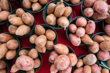 Sweet Potatoes For Sale At A Weekend Farmers Market In St. Pete Beach, Florida.