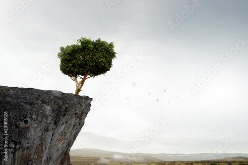 Obraz Lonely tree on rock top. Mixed media - fototapety do salonu