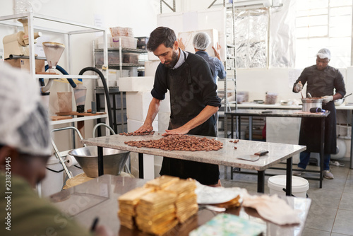 Fotografie, Obraz  Working sorting through cocoa beans on a factory table