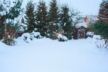 Winter Snowy Garden View With ...