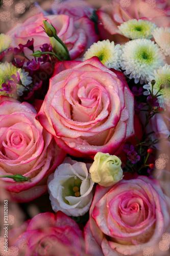 Aluminium Prints Dahlia sag es mit rosen