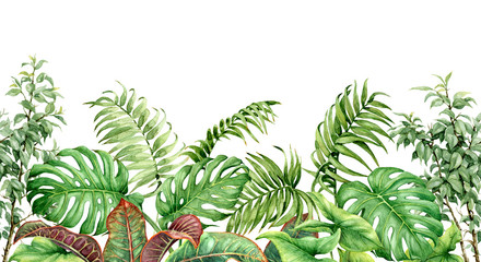 FototapetaTropical Plants Seamless Border