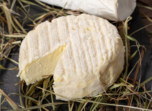 Close Up Of French Cheese Sain...